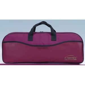 Cartel Junior Case